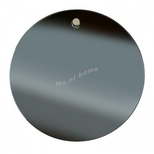 LOTUS mirror, 810951